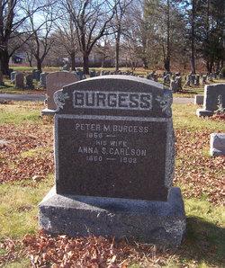 Anna S. <i>Carlson</i> Burgess