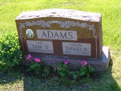 David B. Adams