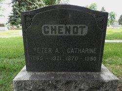Catherine Chenot