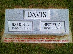 Hester A <i>Richardson</i> Davis