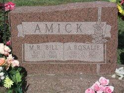 Alice Rosalie <i>McGovern</i> Amick