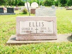 Effie Estal <i>Shetterly</i> Ellis