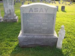 Rebecca M. Asay