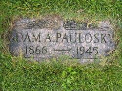 Adam A Paulosky