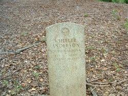 Wheeler Anderson