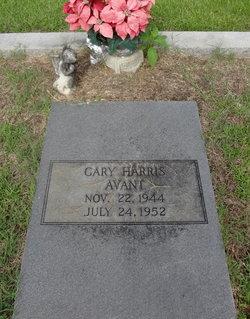 Gary Harris Avant