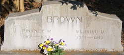 Pinkney Membrance Brown