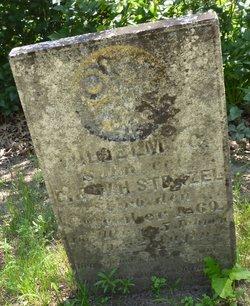 Wilhelm G. Stenzel