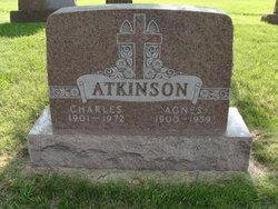Agnes <i>Goebel</i> Atkinson