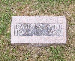 Davie Balkwill
