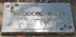 Theodore Bauer