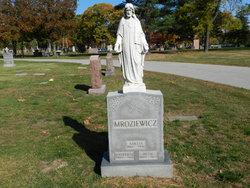 Stephen Morris Mroziewicz