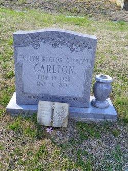 Evelyn Gilbert <i>Rector</i> Carlton