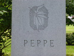 Michael A Peppe