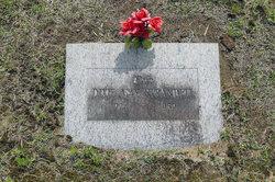 Dixie May <i>Strandell</i> Williams