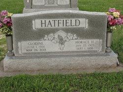 Horace Hardin Hatfield