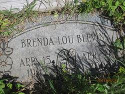 Brenda Lou <i>Foster</i> Blevins
