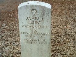 James J Henry