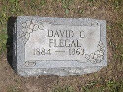David Cleveland Flegal