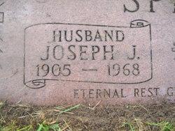 Joseph J Sprava