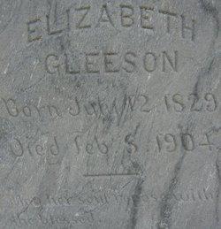 Elizabeth <i>O'Meara</i> Gleeson