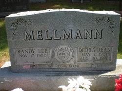 Debra Jean <i>Havens</i> Mellmann