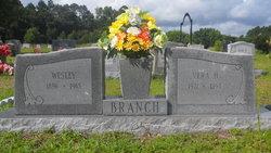 Wesley Branch