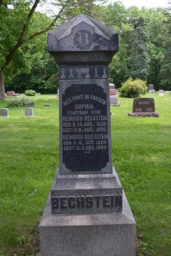 Heinrich Henry Bechstein