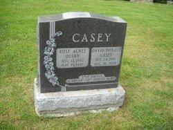 David Donald Casey