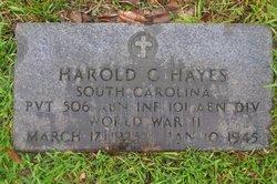 Pvt Harold G Hayes
