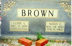Noah Calvin Brown