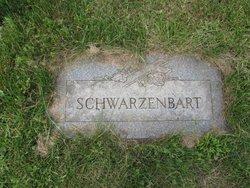 Peter Schwarzenbart