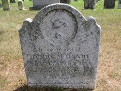 Henry McHenry