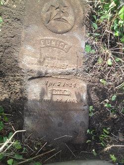 Eunice Jane Niecey <i>Tart</i> Barefoot