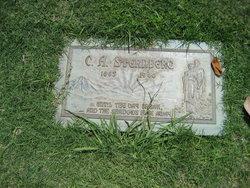 C A Sternberg