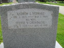 Andrew S. Bednarz