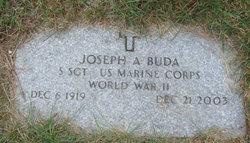 Joseph A Buda