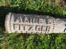 Alice E Fitzgerald