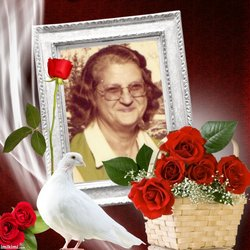 Mary Dianne <i>Dingman</i> Vosburgh