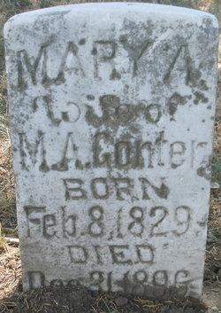 Mary Ann <i>Davis</i> Gonter