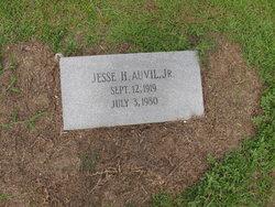 Jesse H Auvil, Jr