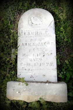 Laura P Jacob