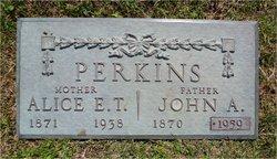 Alice Ellis <i>Thompson</i> Perkins