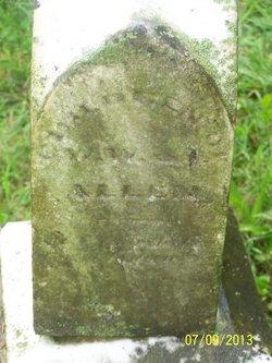 Herbert Allen