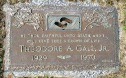 Theodore Albert Gall, Jr