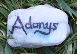 Adonys Unknown
