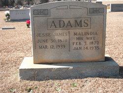 Malinda <i>Allen</i> Adams