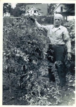 Anton Raymond Koehler