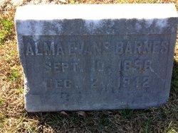 Alma E Barnes