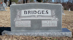 William Bridges